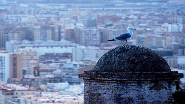 Ways to get around in Malaga, Spain