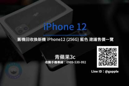 Apple iPhone 12 256G 藍色