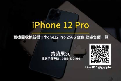 Apple iPhone 12 Pro 256G 金色