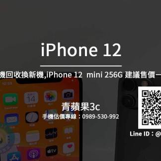iphone12 mini 256G