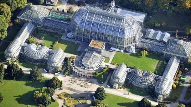 A Wonderful Visit To Botanischer Garten Berlin