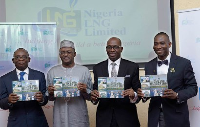 How to spur industrial, economic transformation in Nigeria through gas, by Attah, NLNG MD