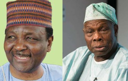 Gowon, Obasanjo, Adesina, Elumelu, others to speak at IITA's 50th anniversary