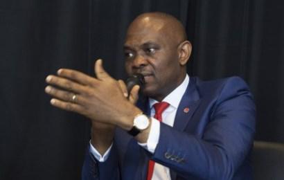 Elumelu at Presidential Villa, implores investors on Nigeria's business ranking