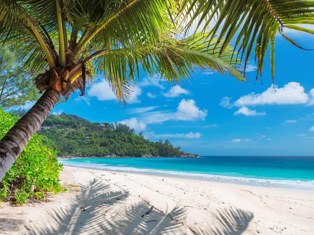 jamaica1