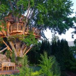 Experience the Treehouse of Your Childhood Dreams!