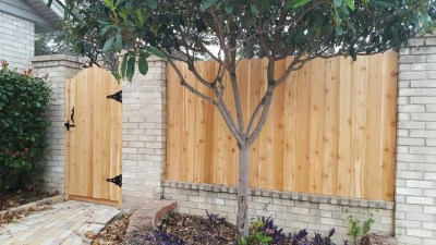 1x4 Cedar Privacy Fencing