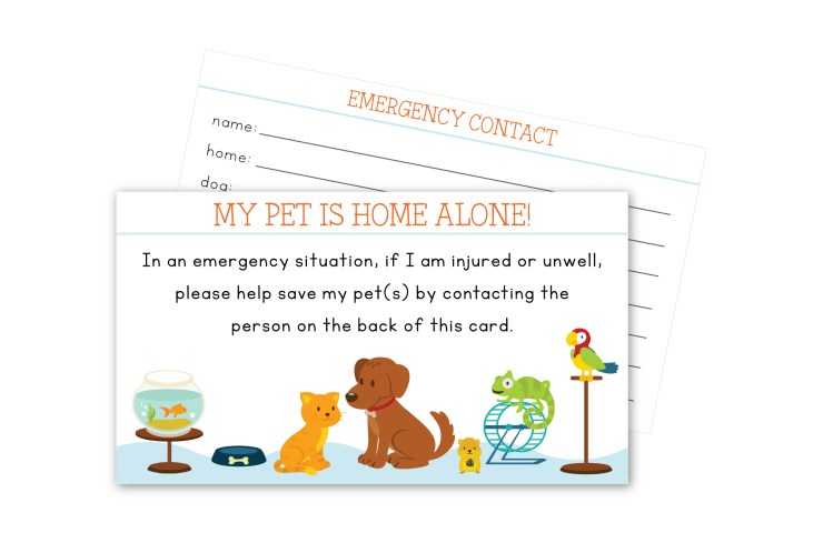 Pet In Case of Emergency