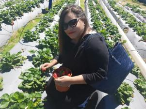 city-girl-vibe-strawberry-picking-in-stellenbosch