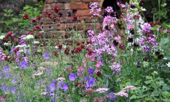 angol kert