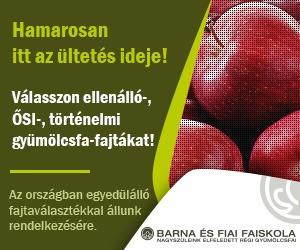 Barna és Fiai Faiskola