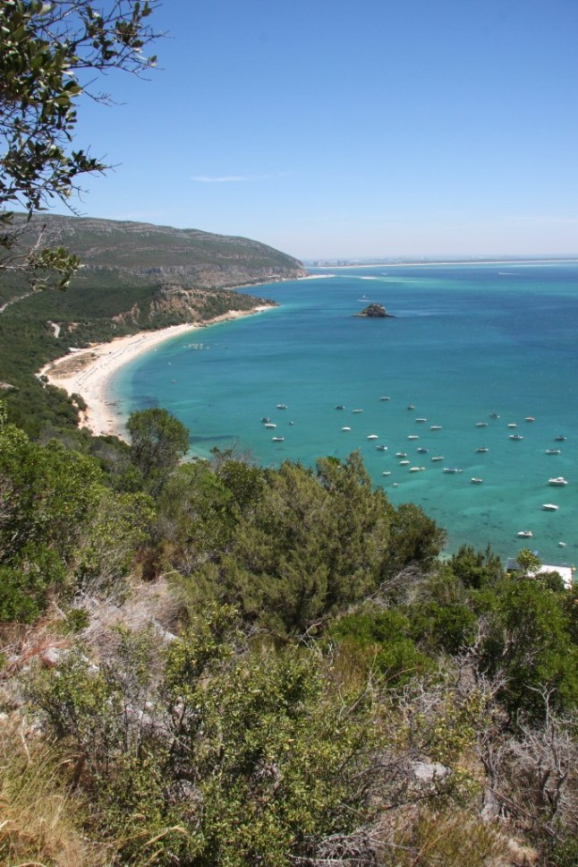 A lush Mediterranean vegetation considered amongst the best in Portugal