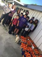 group-pic-tangelo-harvest