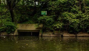 CityViews: NYC Activists Must Take the Environmental