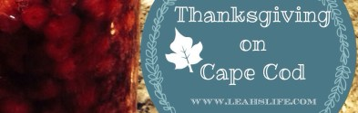 Over the River and Onto the Cape:  Thanksgiving Vacation