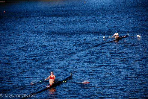 Head of the Charles Regatta Weekend Guide