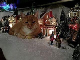 """""""To je moje, ne božično mesto!!"""