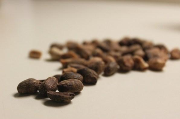 Rok's Peanut Butter – 100% naravno arašidovo maslo