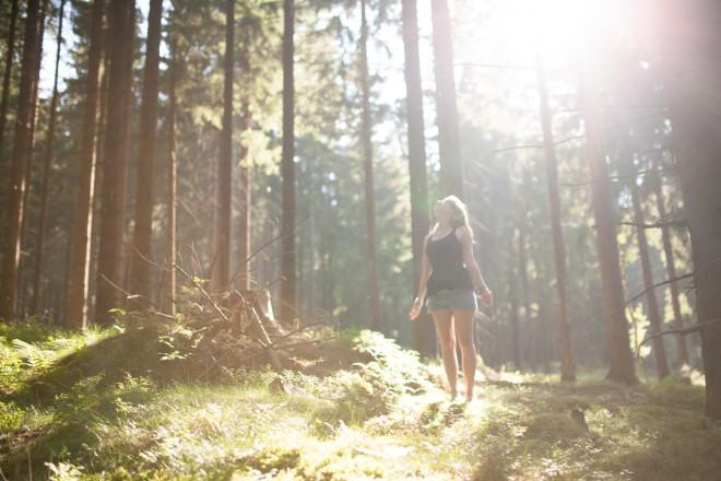 V temnih gozdovih iščeva sonce.