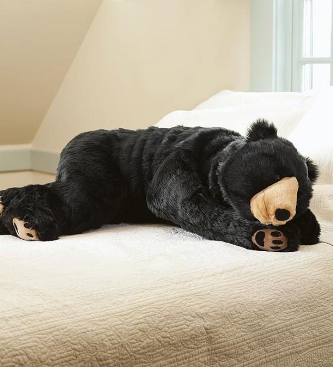 Ali želite to zimo hibernirati kot medved?