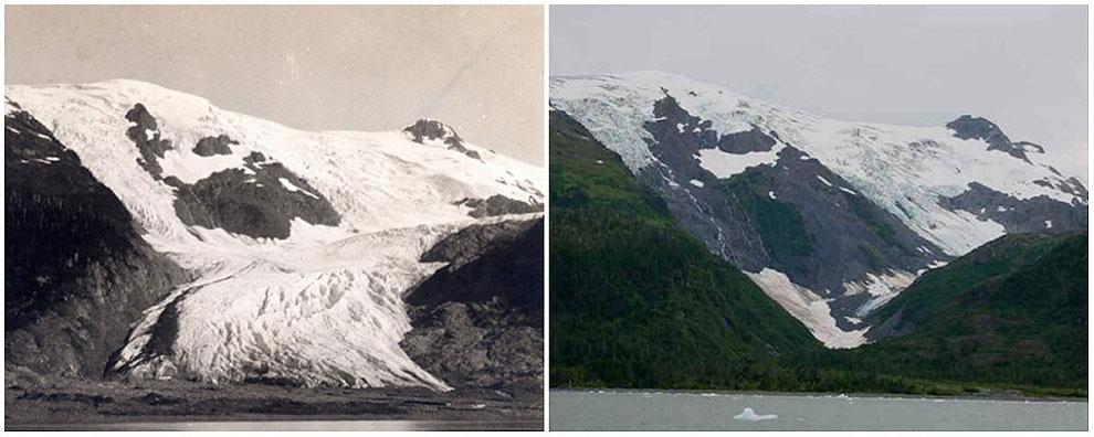 Ledenik Toboggan, Alaska. Junij 1909 - september 2000
