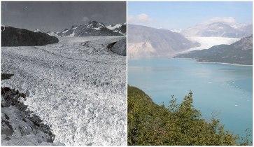Ledenik Muir, Alaska: avgust 1941 - avgust 2004