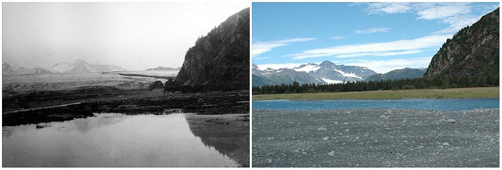 Ledenik Bear, Alaska. Julij 1909 - avgust 2005