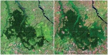 Gozd Mabira, Uganda: november 2001 - januar 2006