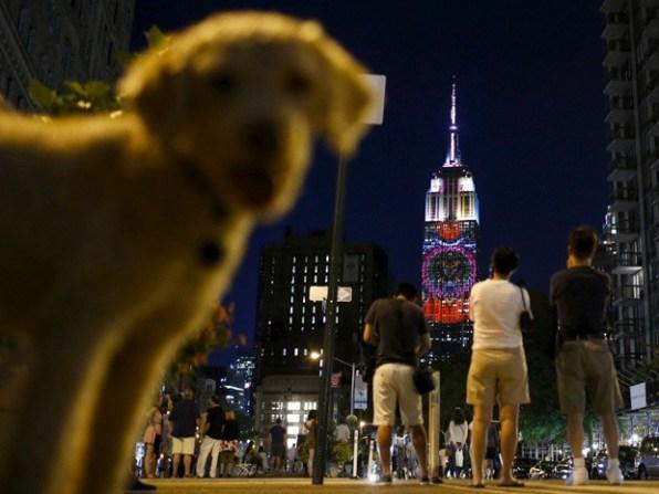 Druge Reutersove najbolj popularne fotografije na Instagramu
