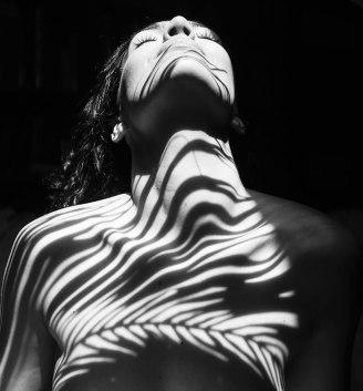 Golo žensko telo zakrito s sencami listov
