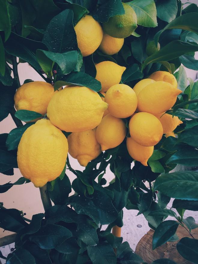 Limona vsebuje citronsko kislino, ki velja za naravno belilno sredstvo.