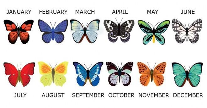 Kateri metulji pripadajo mesecu, v katerem ste se rodili?