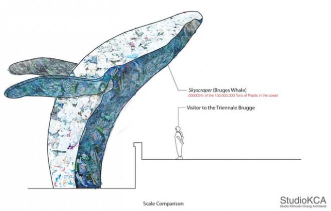 Primerjava med velikostjo kita in človeka.