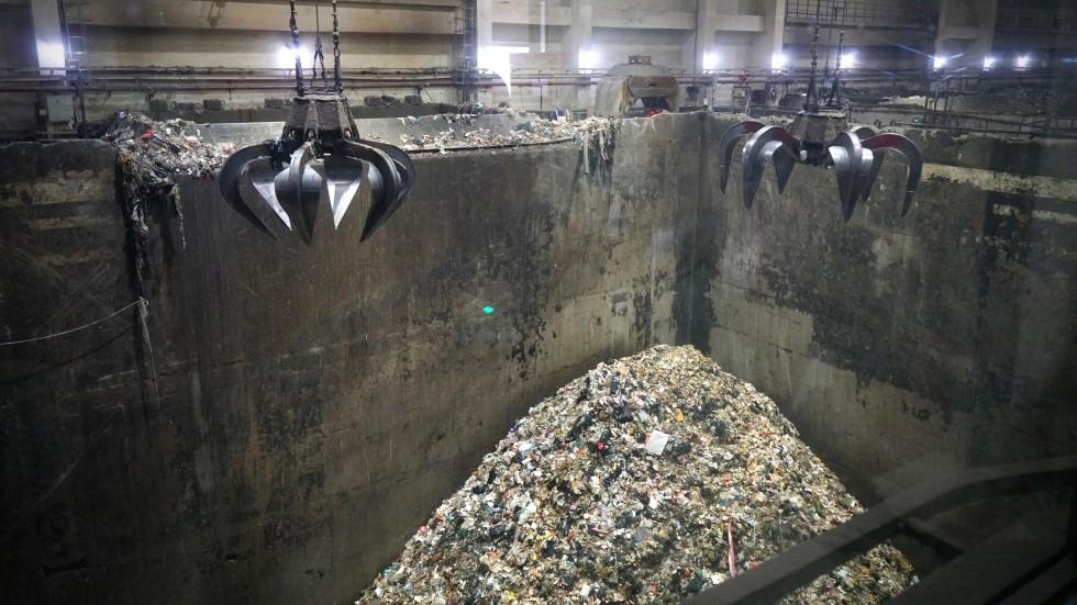 Kitajci pri odstranjevanju odpadkov sodelujejo z instekti.
