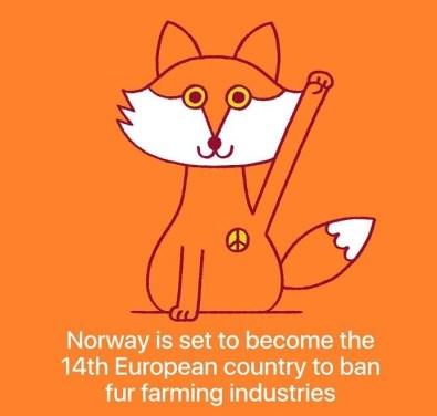 Norveška je 14 evropska država, ki je prepovedala industrijo krzna.