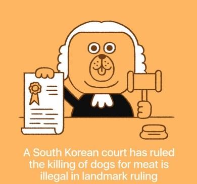 Južna Koreja je prepovedala ubijanje psov zaradi mesa.