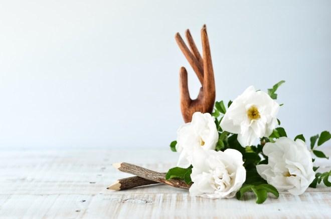 Gardenije