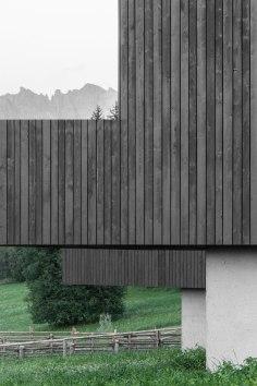 Bergmaisterwolf Fan Forest Houses
