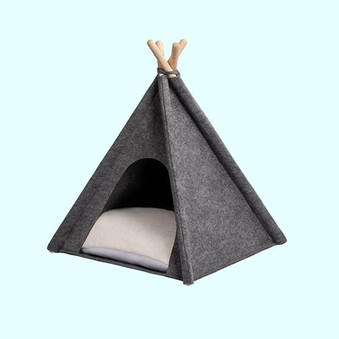 Pasje ležišče v šotoru