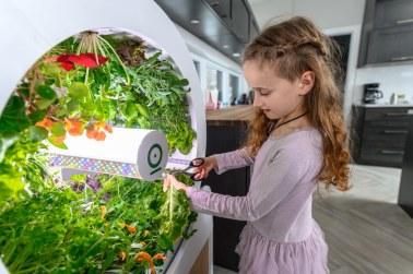 ogarden_smart_gardening_system_06