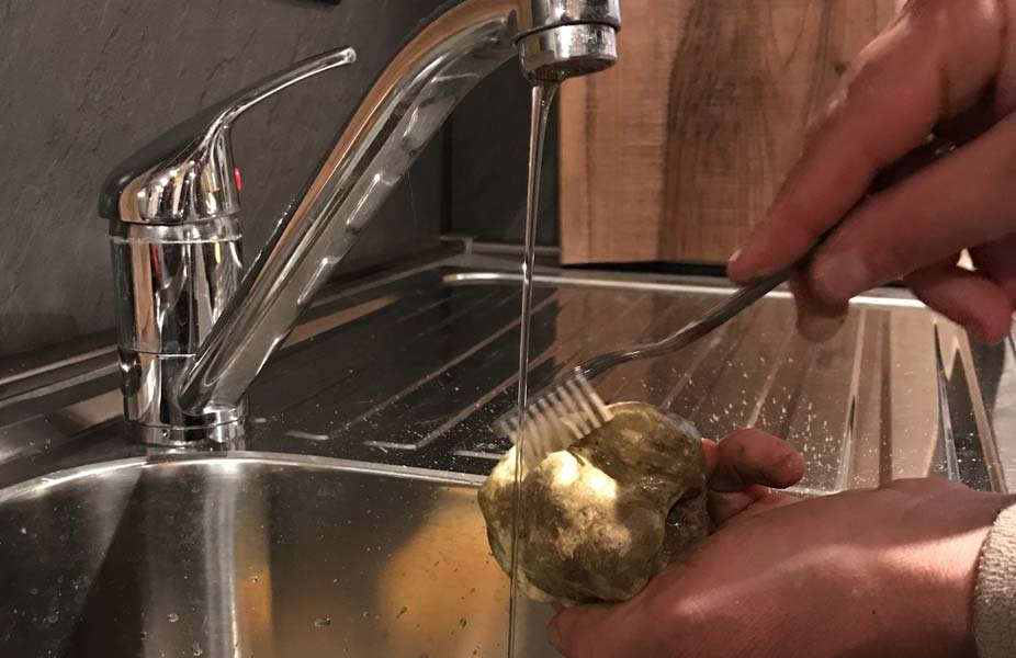 alba-white-truffle-eat-wash