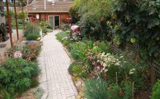 Garden from rear