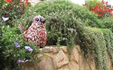 Mosaic in bush