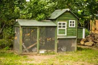 Open Garden - Holt-24