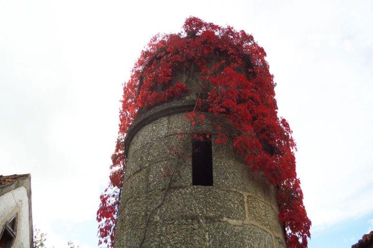 Torre Torrozelo