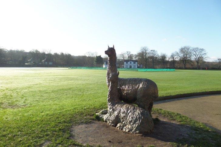 Robert's Park Lamas