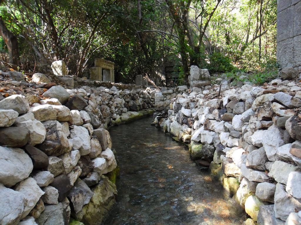 The ancient city of Olympos - 2012, Antalya, Turkey - 48