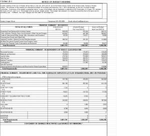2015/16 Budget