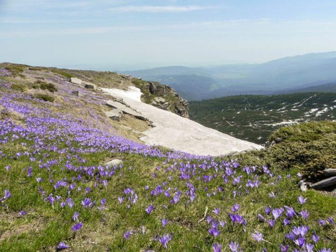 Hiking the 7 Rila Lakes in Bulgaria