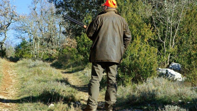 caccia-in-terreni-agricoli:-e-sufficiente-apporre-una-tabella?